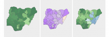 Nigeria Detailed Household Visualization