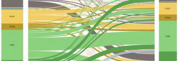 Sixteen Categories Visualization