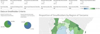 Solo Tanzania Smallholder Definitions